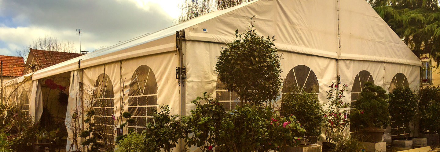 Collection Camellia 2018